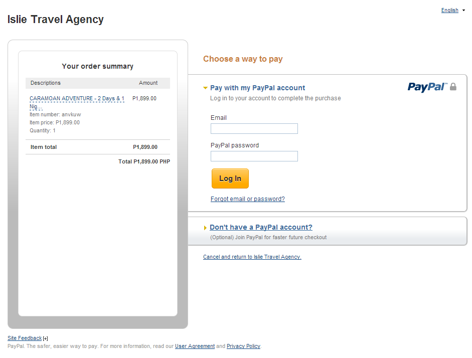 Example Paypal Payment Screen